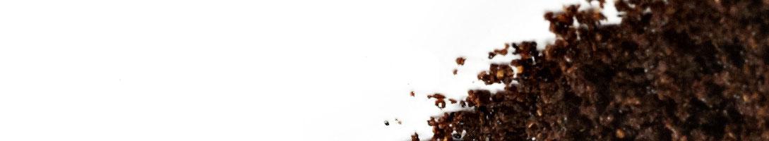 Ground Vanilla
