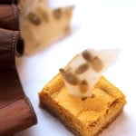 Pumpkin Cheesecake Squares with Pepita Brittle