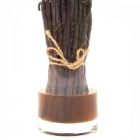 Dried Vanilla Beans? Plump Them Up!